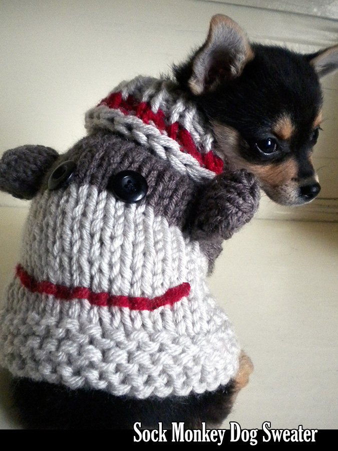 Knitting Patterns For Sock Monkey Clothes : Sock Monkey Dog Sweater Knitting Pattern on Luulla