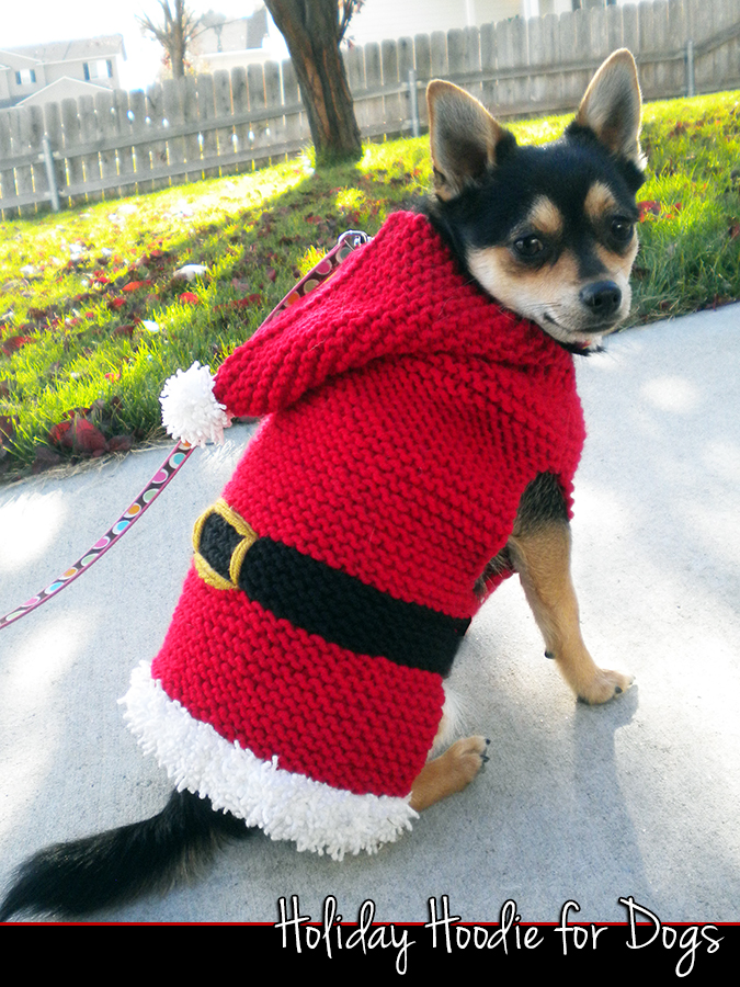 Knitting Patterns For Dog Hoodies : Holiday Hoodie For Dogs Knitting Pattern on Luulla